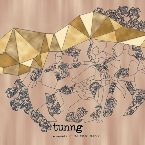 Comments Of The Inner Chorus by Tunng
