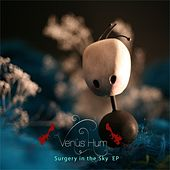 Surgery In The Sky - EP by Venus Hum