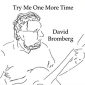 Try Me One More Time by David Bromberg