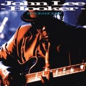 Boom Boom by John Lee Hooker