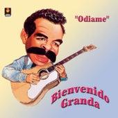 Odiame by Bienvenido Granda