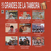 Grandes De La Tambora by Various Artists