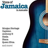 Voice of Jamaica in Acoustic by Various Artists