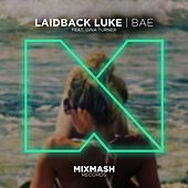 Bae (feat. Gina Turner) by Laidback Luke