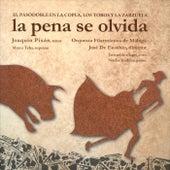 La Pena Se Olvida. el Pasodoble en la Copla, los Toros y la Zarzuela by Joaquín Pixán
