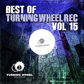 Best of Turning Wheel Rec, Vol. 15 by Various Artists