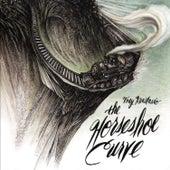 The Horseshoe Curve by Trey Anastasio