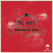 Burning My Soul by Paul White