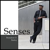 Senses by Brandon O. Bailey
