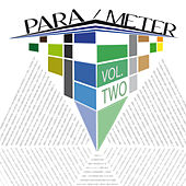 Para/meter, Vol. 2 by Various Artists