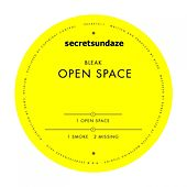 Open Space by Bleak