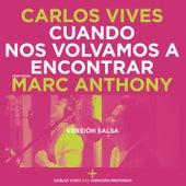 Cuando Nos Volvamos a Encontrar by Carlos Vives
