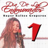 Dia de los Enamorados - Super Exitos Gruperos, Vol. 1 by Various Artists