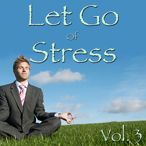 Let Go Of Stress, Vol. 3 by Spirit
