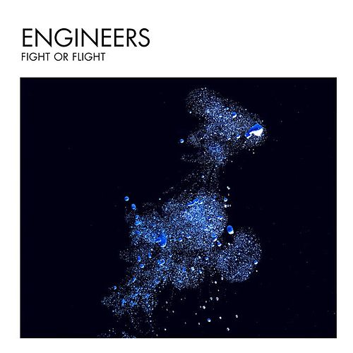 Fight or Flight - Single by Engineers