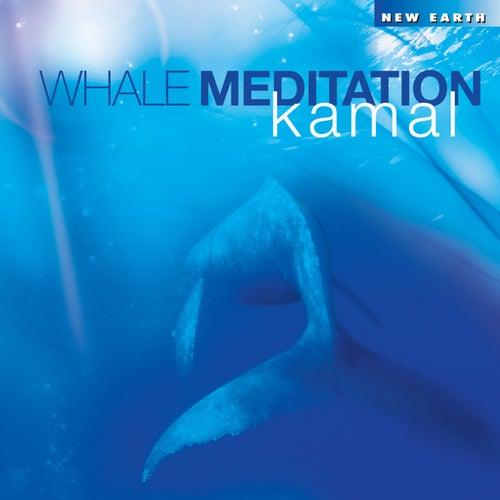 Whale Meditation by Kamal