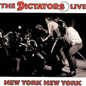 New York New York by The Dictators