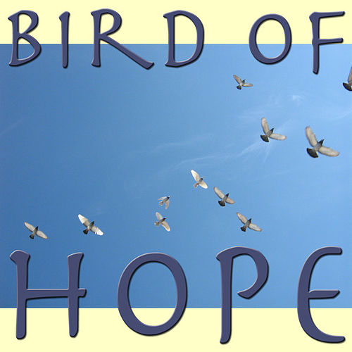 Bird Of Hope by Various Artists