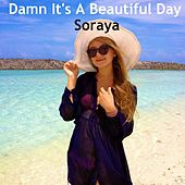 Damn It's a Beautiful Day by Soraya