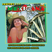 Remixes a la Mexicana Nortenos by Various Artists