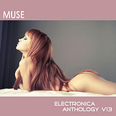 Muse: Electronica Anthology, Vol. 13 by Various Artists