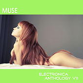 Muse: Electronica Anthology, Vol. 11 by Various Artists
