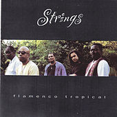 Flamenco Tropical by The Strings