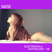 Muse: Electronica Anthology, Vol. 6 by Various Artists