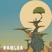Reality by Pangea