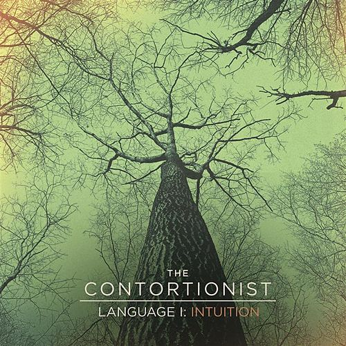 Language I: Intuition by The Contortionist