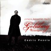 Johann Sebastian Bach: Goldberg Variations by Johann Sebastian Bach