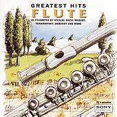 Greatest Hits - Flute von Various Artists