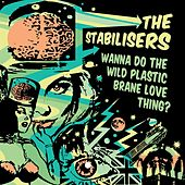 Wanna Do The Wild Plastic Brane Love Thing? by The Stabilisers