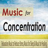 Music for Concentration: Reduce Stress for Greater Concentration With Relaxing Music for Thinking by Robbins Island Music Group