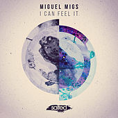 I Can Feel It - Single by Miguel Migs