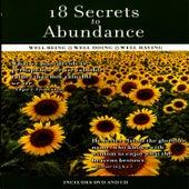 18 Secrets To Abundance by David & The High Spirit