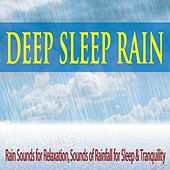 Deep Sleep Rain: Rain Sounds for Relaxation, Sounds of Rainfall for Sleep & Tranquility by Robbins Island Music Group