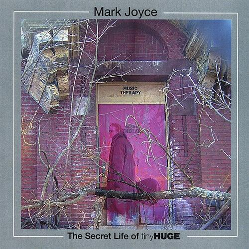 The Secret Life Of tinyHUGE by Mark Joyce