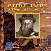 A Twinkle In Your Eye by Burl Ives