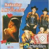 Mañanitas a Mi Madre Con los Norteñisimos by Los Satelites