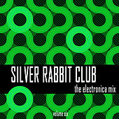 Silver Rabbit Club: The Electronica Mix, Vol. 6 by Various Artists