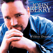 Wildest Dreams by John Berry