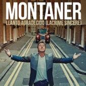 Llanto Agradecido (Lacrime Sincere) by Ricardo Montaner