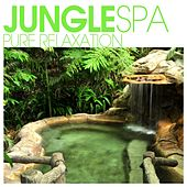 Jungle SPA - Pure Relaxation by Various Artists