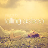Playlist for Falling Asleep by Various Artists