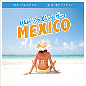 Wish You Were Here Mexico by Wayne Jones