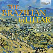 The Brazilian Guitar by Flavio Apro