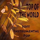 Soft Instrumental Pop: Top of the World by The O'Neill Brothers Group