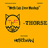 Meth Lab Zoso Mashup by WOW