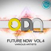 Future Now Vol.4 by Various Artists